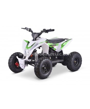 Quad 36V 1000W Adventurer